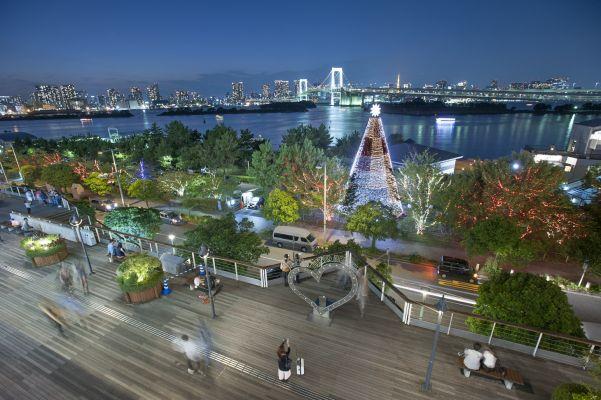 ビーチ デックス 東京